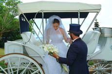 Bocage Plantation wedding facility