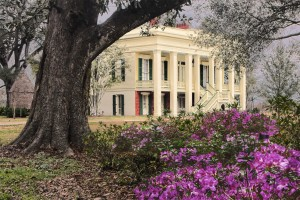 Bocage Plantation Bed and Breakfast in Darrow, Louisiana
